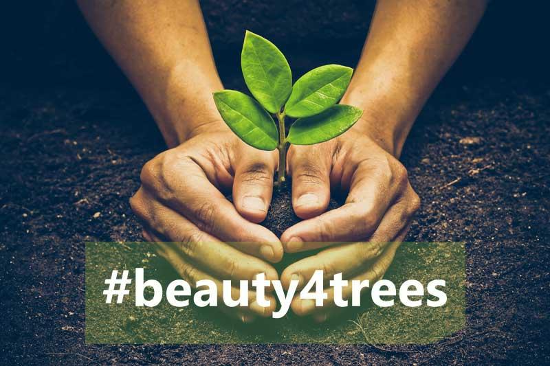 Beauty4trees