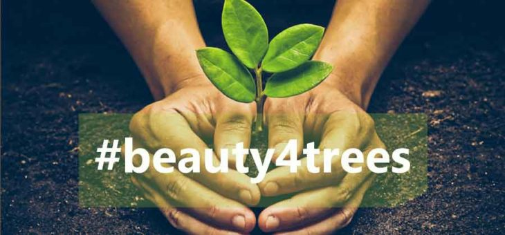 Beauty4trees – 🌳 pflanzen